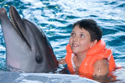 amazing dolphin facts picture: for a boy, the dolphin is amazing