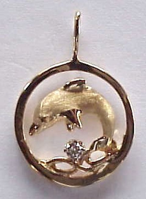Dolphin Jewelry - A Dolphin in a Golden Circle